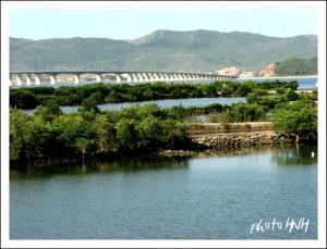 Cầu Thị Nại - Ảnh HNHạnh (Flickr.com)