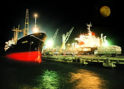 Tàu vào làm hàng tại Cảng Quy Nhơn. Ảnh: TL CQN